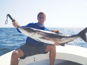 Nic Reschly caught this 38-lb. cobia with a live pogie while fishing with Capt. Alan Beasley in May. Courtesy photo
