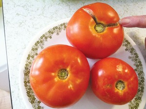 6.  Tomatoes  Where to buy: Roadside produce markets or farms What to look for: Bigger is better.  Uniformed red color.  Don't buy if: Soft or dark spots. The skin is split. How to prepare: Slice and eat fresh with salt and pepper.